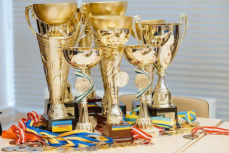Зірок акробатики, спортивних танців, сумо та шахів привітали у Вінниці